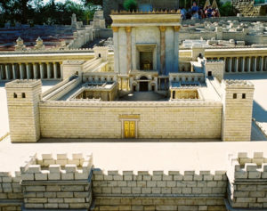 Read more about the article Un nuovo museo per Erode in Israele
